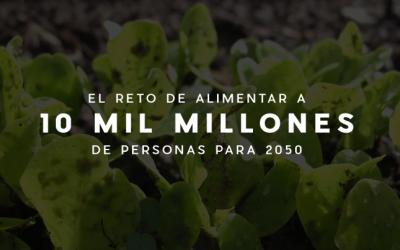 ¿Qué comeremos para 2050?: El reto de alimentar a 10 mil millones de personas para 2050 y de no seguir destruyendo al ambiente