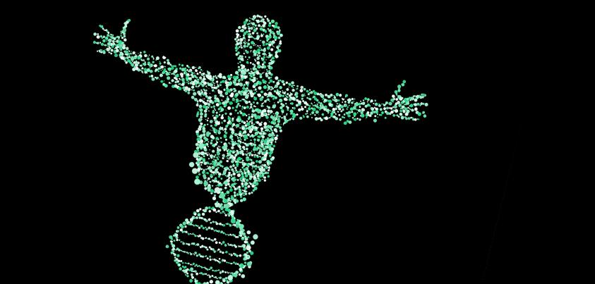 Innovar para no morir: La importancia de hacer las cosas diferente y de que esto forme parte del ADN de la empresa