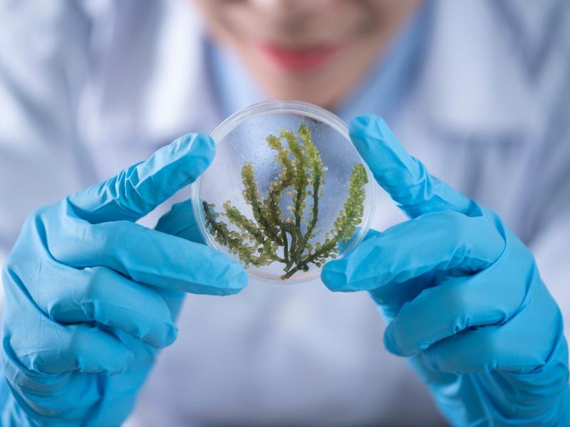 #MujeresEnCiencia: Las mujeres en la ciencia, una brecha de género que aún no se cierra